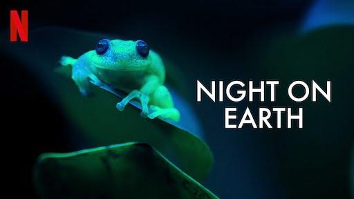 Night On Earth Apžvalga